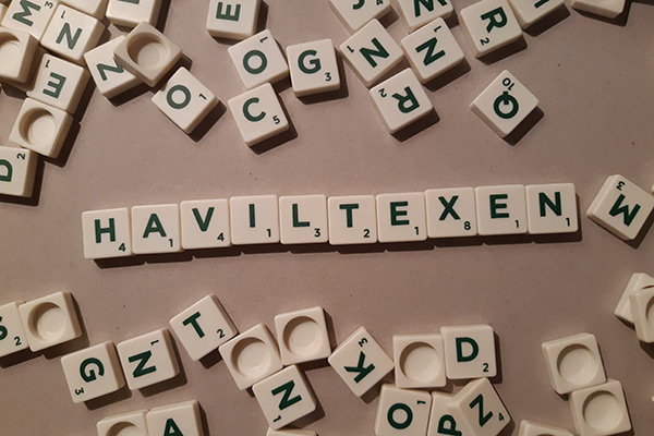 Haviltex