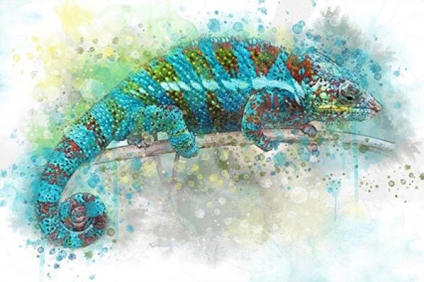 Designerdrugs de kameleon van de on-derwereld - Mr. Online