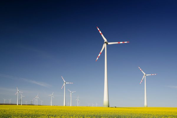 Energiegemeenschappen Handelingsperspectief voor ondernemingen