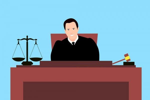 Ook niet-advocaten kunnen bij de Hoge Raad een pleidooi voeren