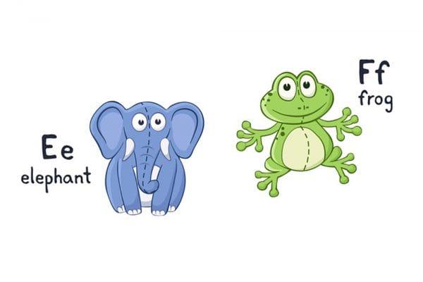 You can say it's a frog, but if it is grey and has a trumpet, it's an elephant